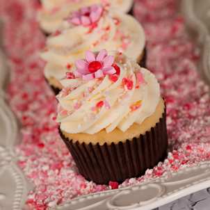 Strawberry Cheesecake Gourmet Cupcake