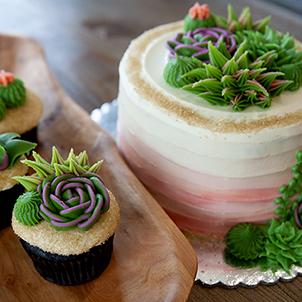 Decorating Class-Succulents-WC-Sept 26th