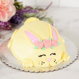 Sleepy Bunny- Egg Cake