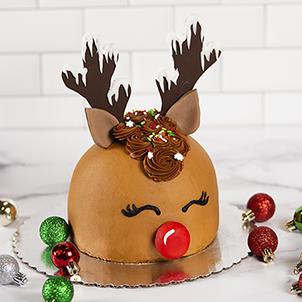 Take & Make: Reindeer Cake